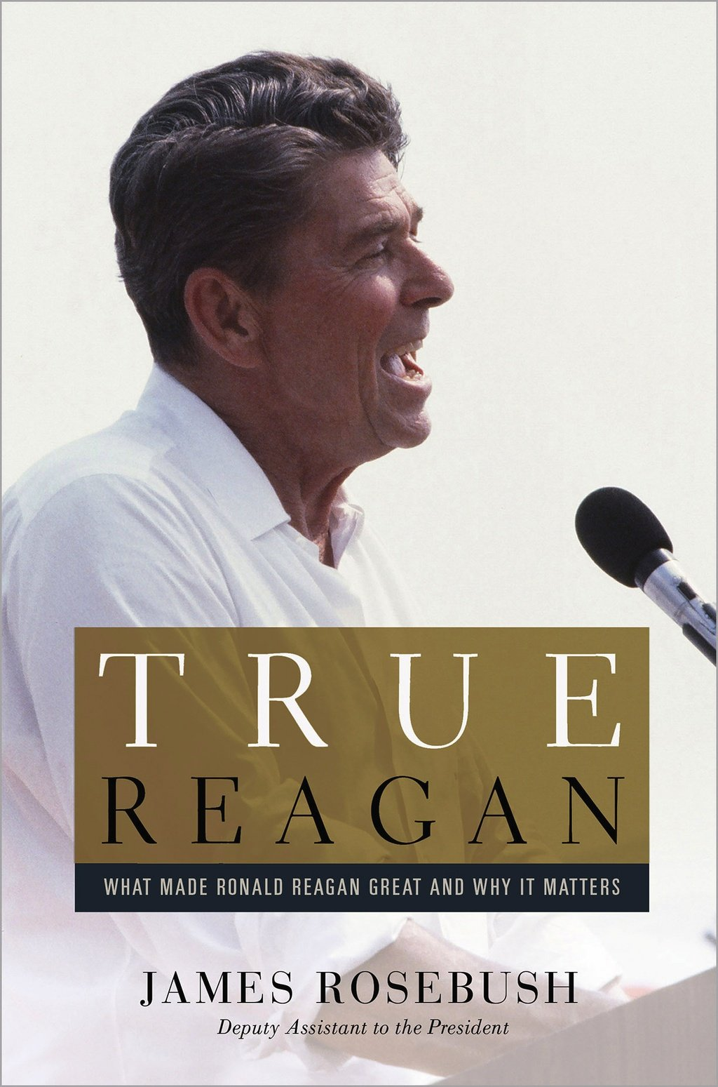 Download True Reagan: What Made Ronald Reagan Great and Why It Matters pdf