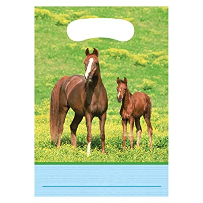 Creative Converting Wild Horses 8 Count Party Favor Loot Bags: Childrens Party Supplies: Kitchen & Dining [5Bkhe0203613]