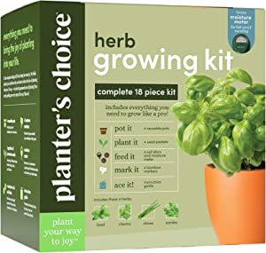 Herb Garden Growing Kit - Complete Kit - Easily Grow 4 Indoor Herbs from Seeds (Basil, Cilantro, Chives & Parsley) & Comprehensive Guide - Unique Gardening Gifts for Women & Men : Plant Starter Kits