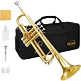 Eking Bb Trumpet Standard Student Bb Trumpet Set Gold Trumpet with Hard Case, Valve Oil, 7C Mouthpiece, Cleaning Cloth…