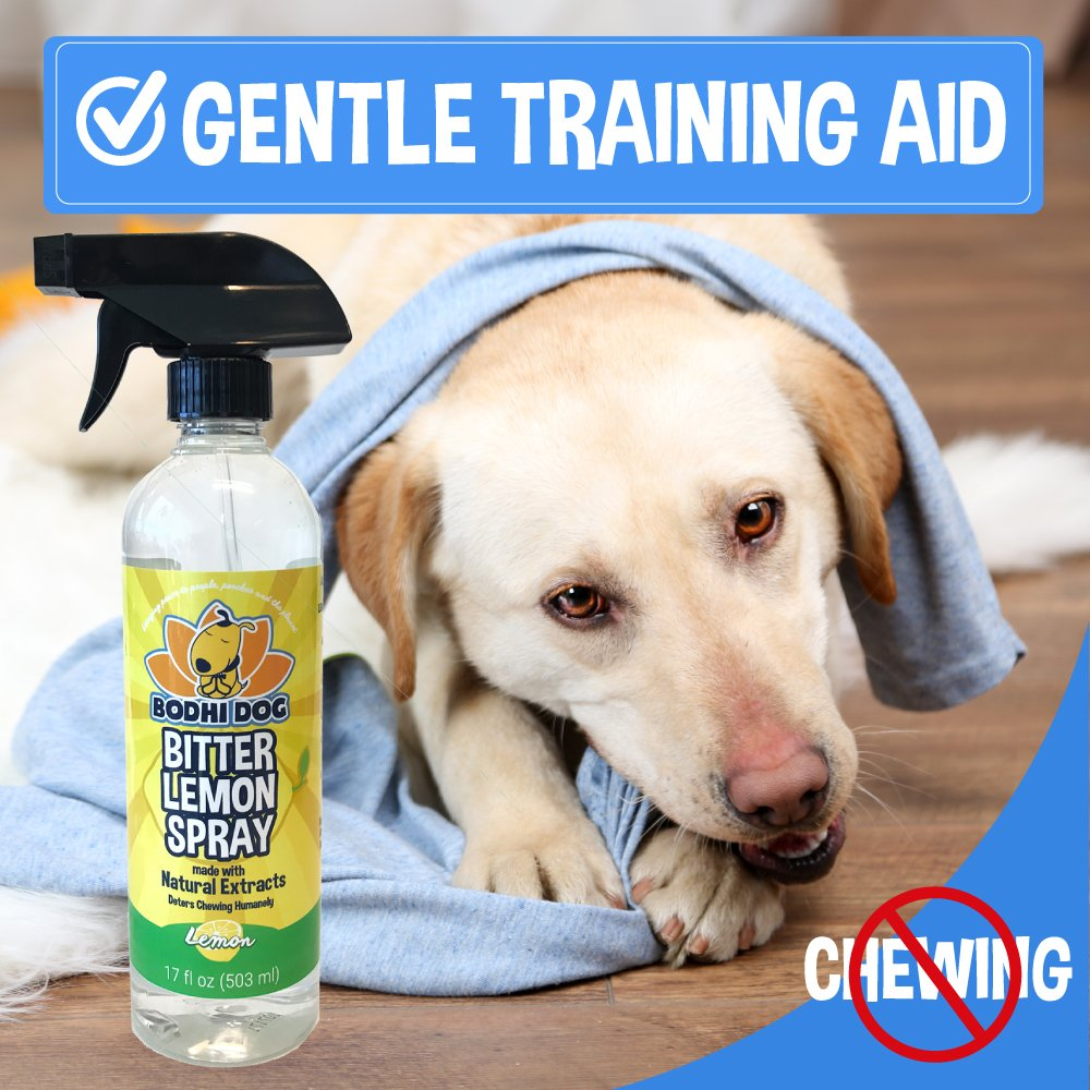 Amazon.com : NEW Bitter Lemon Spray | Stop Biting and Chewing for ...