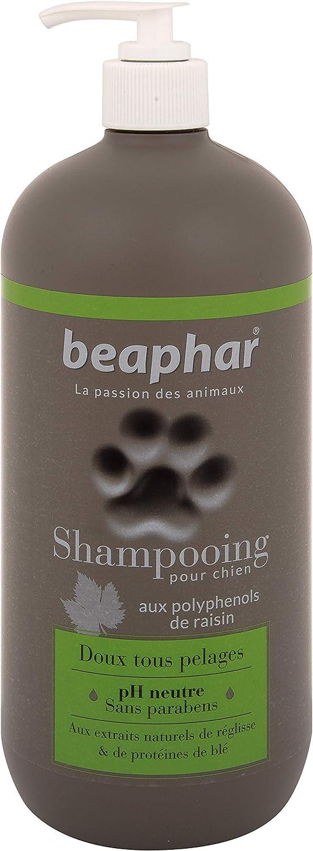 Beaphar Champú Alta Cosmética Perros Todo Tipo de Pelo, Un tamaño 750 ml 750 ml