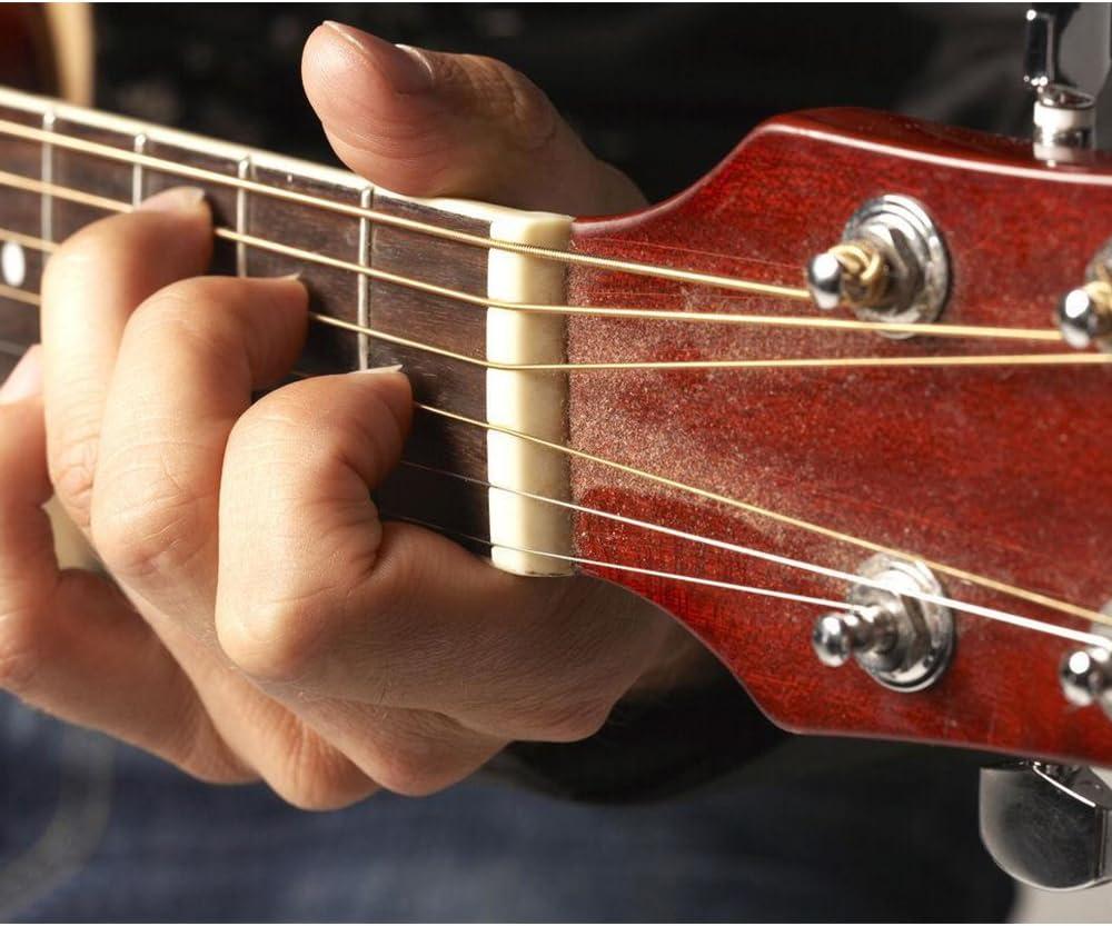 Anpro Hueso Puente para Guitarra Clásica de 6 Cuerdas Hecho de ...