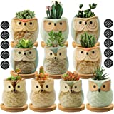 FairyLavie Succulent Pots, 2.5'' Owl Planter Owl Pot, Small Pots for Plants Cute Small Planter with Accessories, Great for Ho