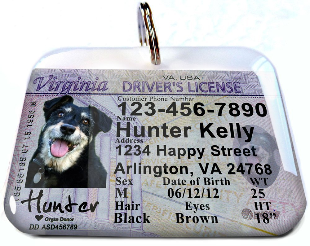 Virginia State Drivers License Personalized for Dog's and Cats by ID4PET (Large 2.00'' x 1.50'')