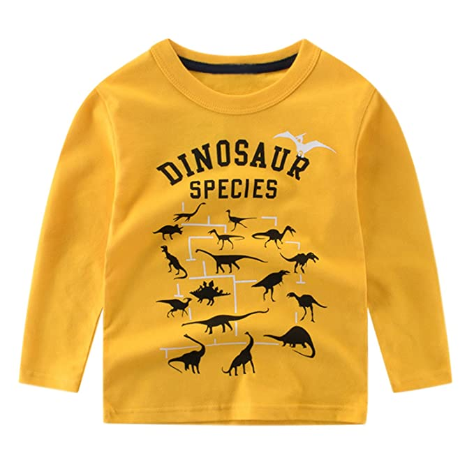 Toddler Baby Boys Dinosaur Long Sleeve Baseball T-Shirt Tops Clothing:  Amazon.co.uk: Clothing