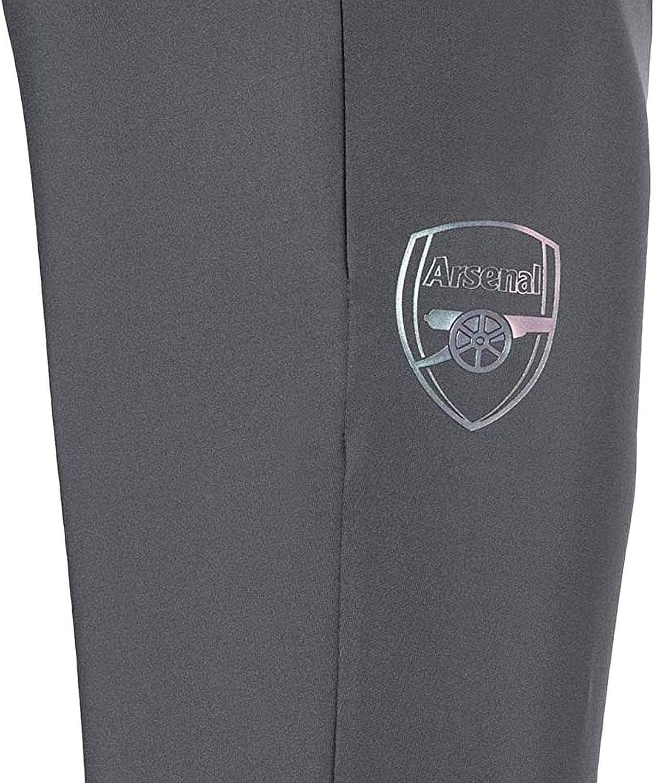 PUMA 2018-2019 Arsenal Pro Training Pants with Pockets (Grey ...