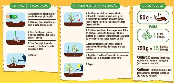 Solabiol Fertilizante cítricos con Ingredientes 100% organicos y ...