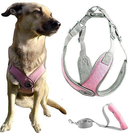 Abrrlo Hundegeschirr Verstellbares Netzgewebe Atmungsaktiv Reflektierend Weich Gepolstert Für Welpen Katzen Und Welpen Für Training Spaziergänge Im Freien S Pink Haustier