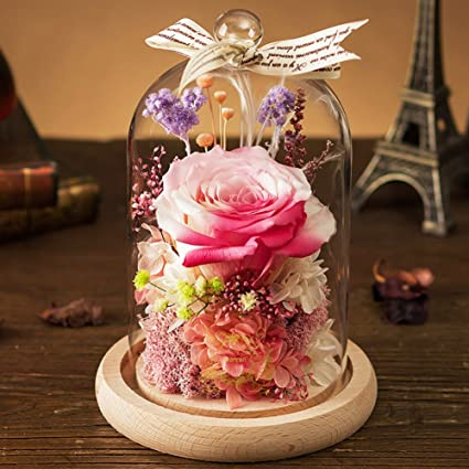 Glass Immortal Flower Diy Dried Flowers Of Roses Preserved Flower