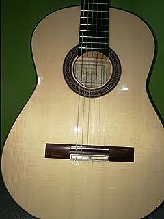 Guitarra Clásica Alhambra 30 Klavier Ziricote + Estuche: Amazon.es: Instrumentos musicales