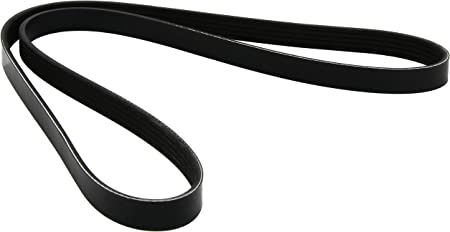 Dayco 5PK1290 Poly Rib Belt