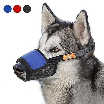Amazon.com: Funda suave para bozal de perro con gancho y ...
