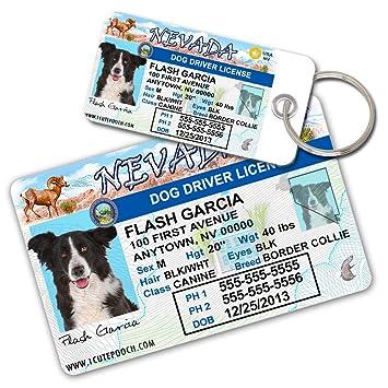amazon com nevada driver license custom dog tags for pets 2 and