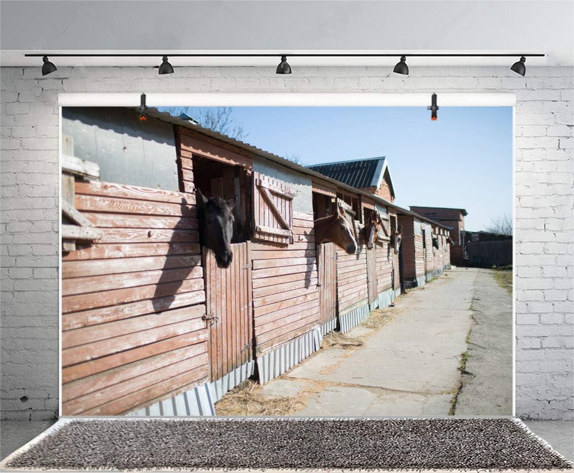 Haoyiyi 6x4ft Cowboy Town Backdrop Background Retro Western Bank Horse Barn Cabin Photography Kids Children Girl Boys Adults Artistic Portrait Wallpaper Invitation Cake Table Decor Supplies
