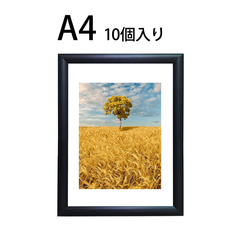 HAITIAN ポスターフレーム 写真フレーム ブッラク-A4 サイズ 壁掛け 掲示用 アルミフレーム ポスターパネル アルミ額縁 【10個入り】   B07PM2LQ68