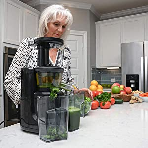 Homesmart Black Stainless Steel Slow Masticating Cold Press Juicer with Big Feed Chute Juicer Jug Pulp Container Cleaning Brush Manual