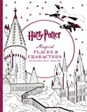 HARRY POTTER MAGICAL PLACES &