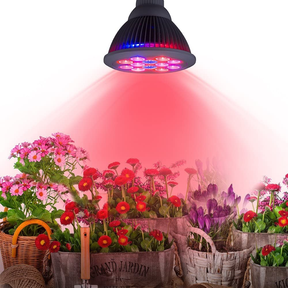 24 watt LED Plant Grow Light Bulb for Standard E26 Socket - 3 Bands Suitable for All Stages of Growth - Vegetation, Flowering and Fruiting by Electronix Express
