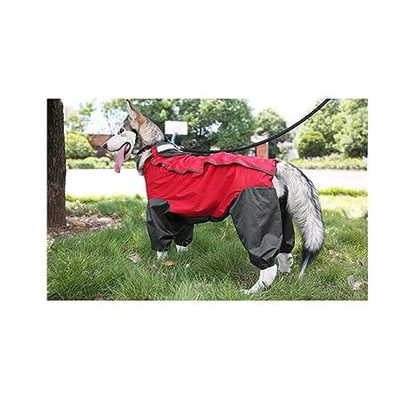 Mascotas Impermeable Grande del Perro para Husky Labrador ...