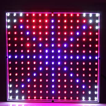 Fuloon 15W LED Pflanzenlampe 4 Farbe Pflanzen Grow Light Lampe  Pflanzenlicht Led Stromsparende Multifarbige Led Rot