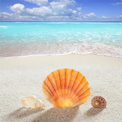 OFILA Tropical Beach Backdrop 8x8ft Seaside Holiday Sand Seashell Sea Waves  Blue Sky Water Summer Kids Party Birthday Photos Baby Shower Theme Newborn