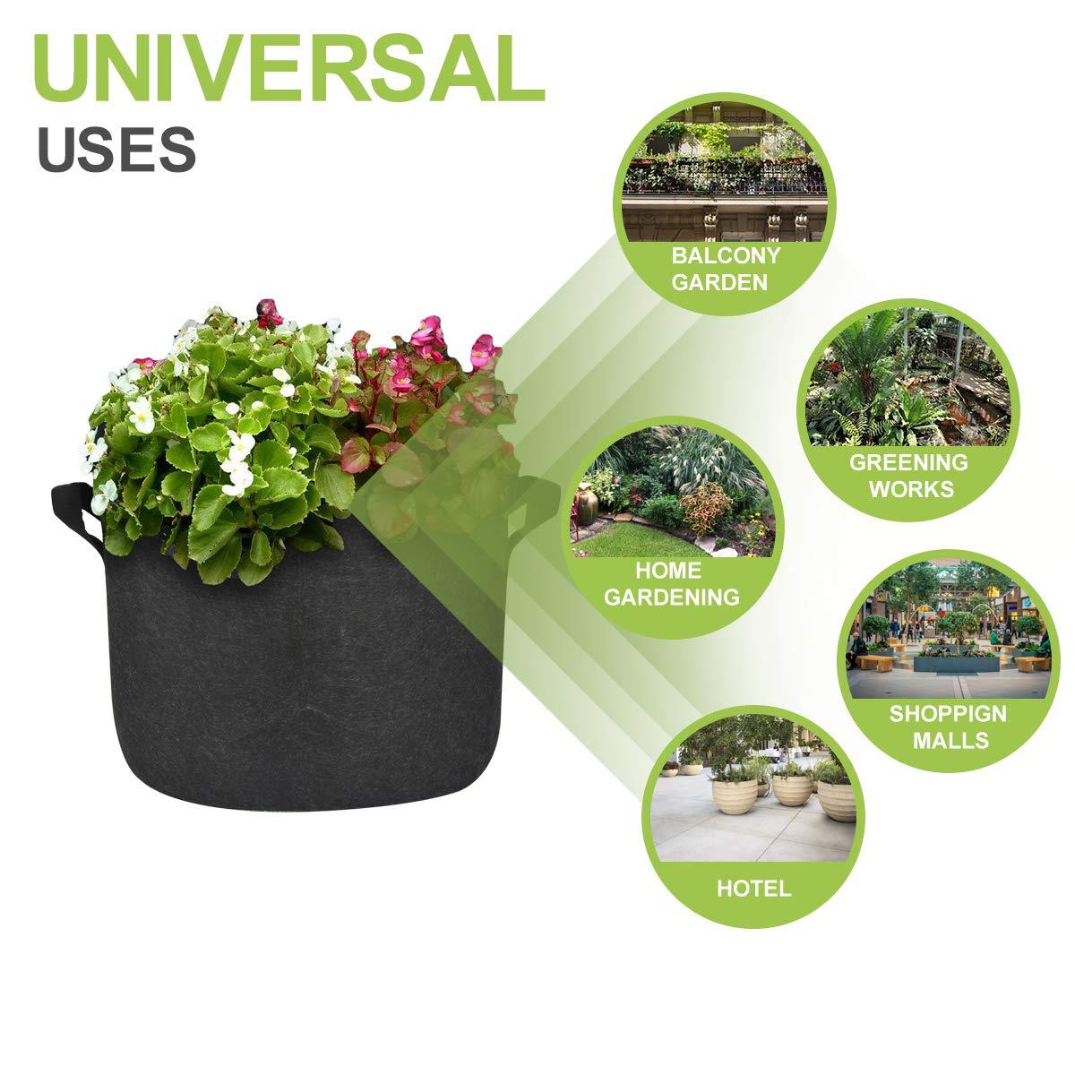 Amazon.com: MEARTEVE - 10 bolsas de cultivo premium de 10 ...