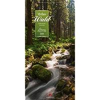 Mythos Wald 2019, Wandkalender im Hochformat (33x66 cm) - Naturkalender / Literaturkalender mit Zitaten mit Monatskalendarium (Literarische Reihe)