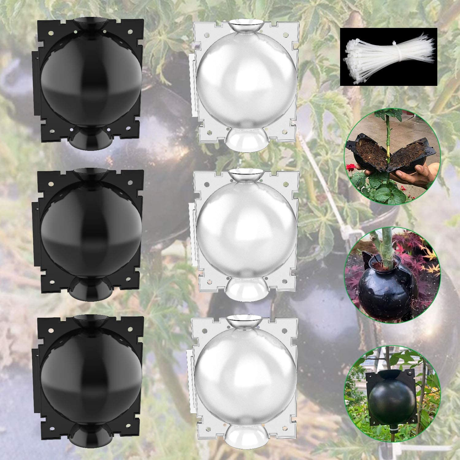 Deyard Plant Root Growing Box, Rooting, Cutting Rooting Device, High-Pressure Plant Air Layering Pods Propagation Ball, Plant Grafting Box (3 Black + 3 Clear)