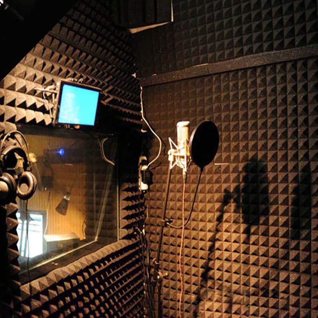Digood 10Pcs Acoustic Foam Panel Sound Stop Absorption Sponge Studio KTV Soundproof