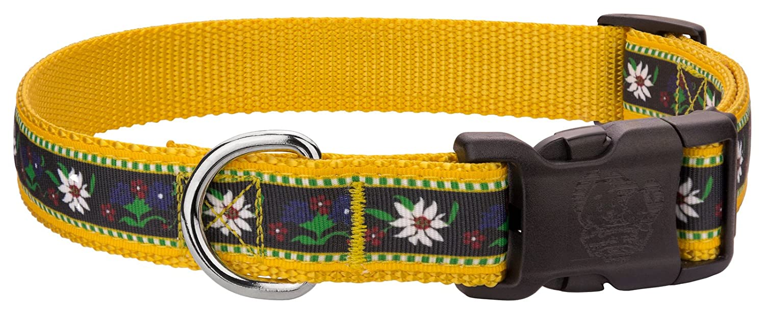 Large, 1 Inch Wide Country Brook Design   Deluxe Edelweiss Ribbon Dog Collar Large