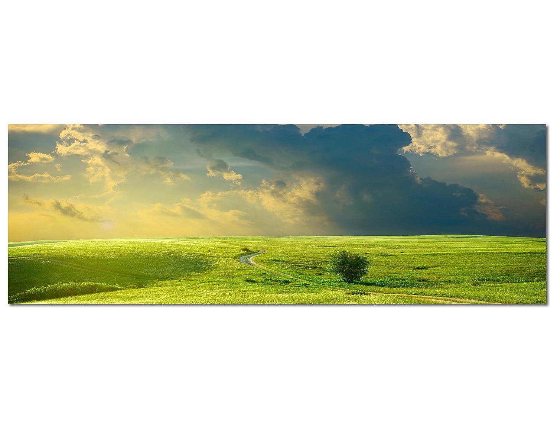 PANORAMA BILD 150x50cm (Grün Wiese Irland) Wandbilder Bilder ...