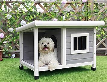 petsfit - Caseta de perro, Casa de Perro Exterior: Amazon.es: Productos para mascotas