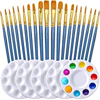DELFINO Paint Brush Set, 2 Packs/20pcs Round Pointed Tip Nylon Hair Brushes with 5 Paint Palettes for Acrylic Watercolor…