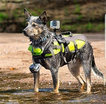 simuerdes ajustable arnés del perro arnés de pecho para Go Pro.: Amazon.es: Electrónica