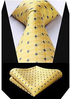 BIYINI Corbata y panuelo de corbata con diseno de jacquard Woven Classic para hombre y corbata cuadrada para hombres: Amazon.es: Ropa y accesorios