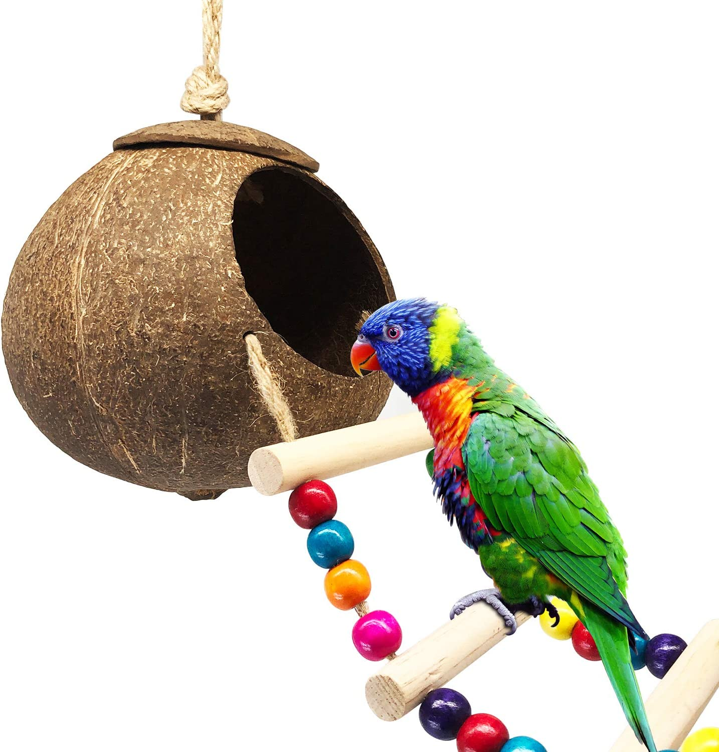 DICOBEE Coconut Bird House with Ladder, Hanging Coconut Shell Bird Nest for Parakeets, Love Birds and Canary, Natural Coconut Hideaway for Small Animal Cage Toys
