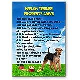 Welsh Terrier Property Laws Fridge Magnet