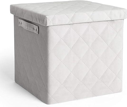 Beautify Caja de almacenamiento con tapa en terciopelo acolchado gris - Caja de almacenamiento decorativa plegable Caja de almacenamiento en cubo para ropa: Amazon.es: Hogar