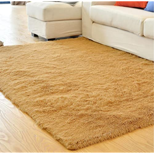 Fluffy Area Rug: Amazon.com
