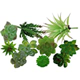 Greatflower 10 Different kinds of Artificial Succulents DIY Materials for Plants Wall