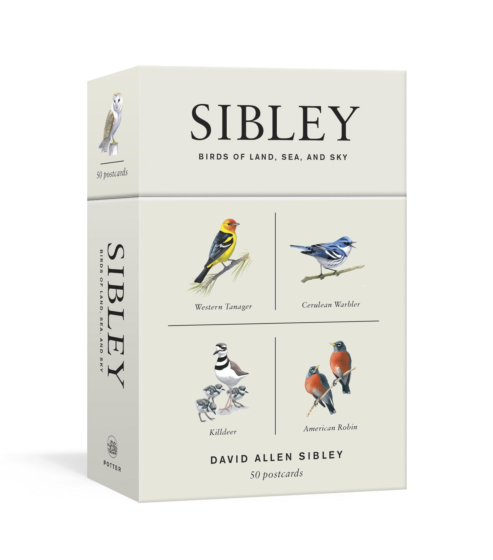 Image result for sibley birds of land, sea, and sky