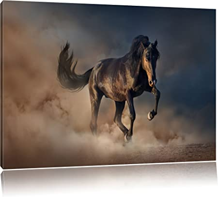 """X LARGE CANVAS PICTURE HORSE ON SEA BLACK AND WHITE 44/"""""""