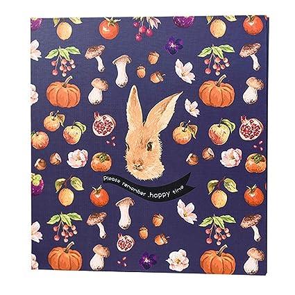 Amazon Com Scrapbook Photo Album Storage Box 20 Page Craft Paper