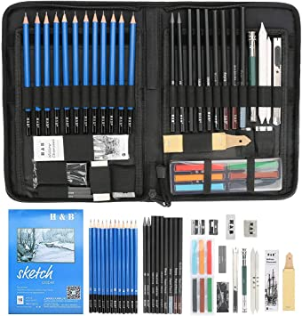 Color You Juego de lápices para Dibujar y Dibujar de H&B (48 Piezas), Kit Completo para Artista Que Incluye artículos de Arte Lápices de Dibujo de Grafito Carboncillos: Amazon.es: Juguetes y juegos