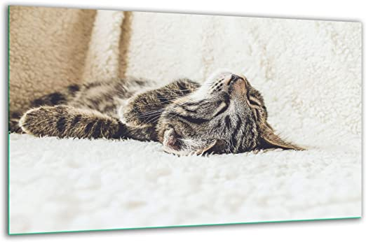 Placa de vitrocerámica, 80 x 52 cm, diseño de Gato, Color Negro, Placa de cocción, Cristal, decoración de inducción: Amazon.es: Hogar