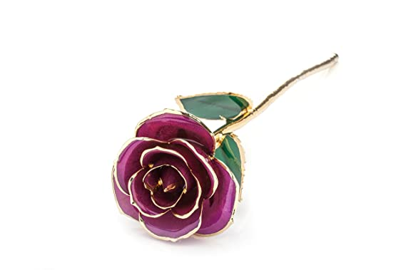45d641d57ff ZJchao Cadeau Femme - Rose éternelle - idée Cadeau Anniversaire  (Rose )