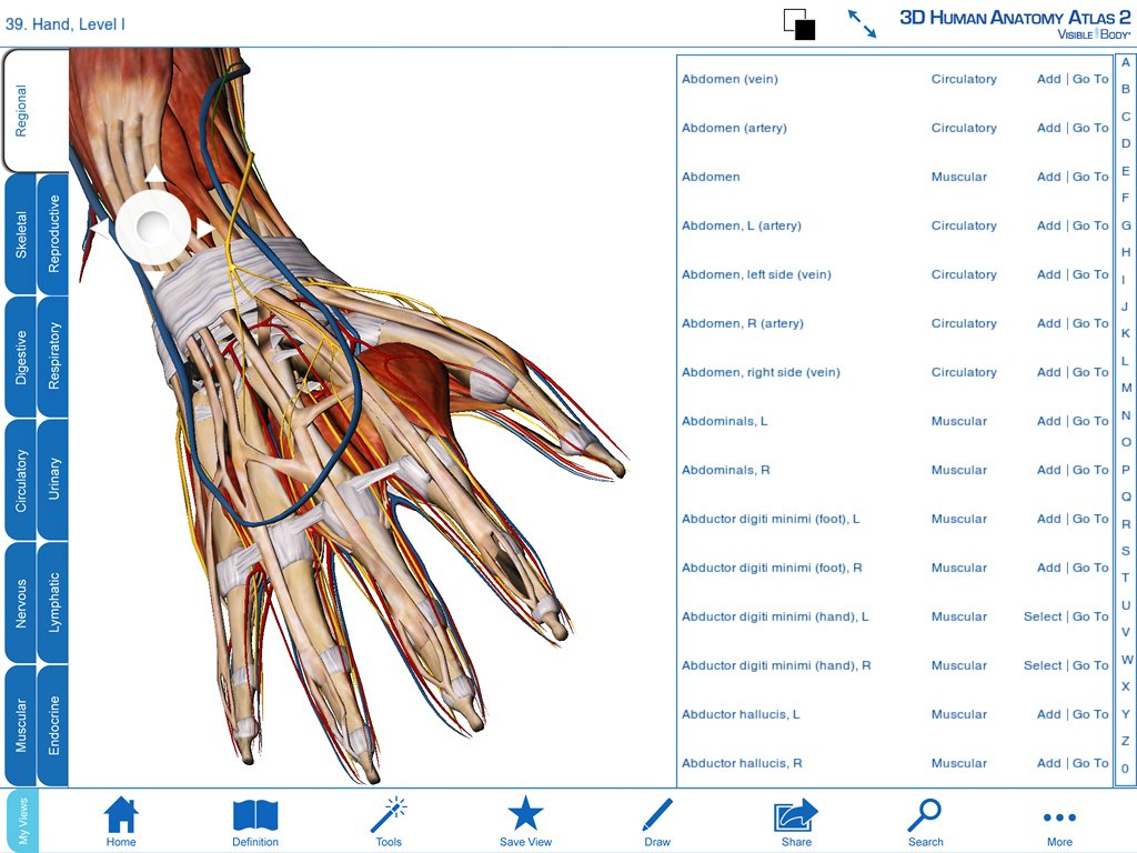 Amazon.com: Visible Body 3D Human Anatomy Atlas 2 [Download]: Software