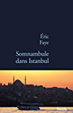 Somnambule dans Istanbul (La Bleue)
