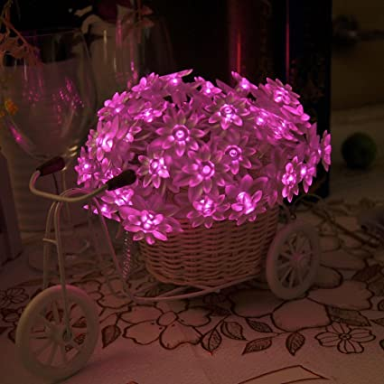 Amazon er chentm battery operated indoor and outdoor 60 led er chentm battery operated indoor and outdoor 60 led lotus flower fairy lights mightylinksfo